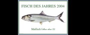 Fisch des Jahres 2004